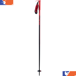 LINE Wallisch Ski Pole 2020/2021