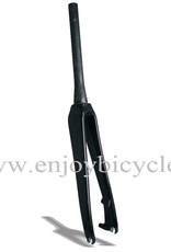 Carbent HPV Carbent HPV Tapered Disk Road Fork