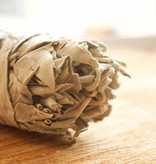 Sage Bundle Large