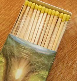 Treehouse Forest Matches