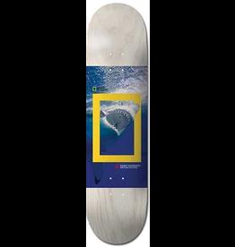 Element Element Greyson National Geographic Deck - 8.5 x 32.7