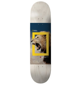 Element Element Nyjah National Geographic Deck - 8.0 x 32.06