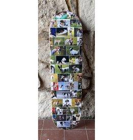 Skate Mental Skate Mental Curtin Dogs - 8.0