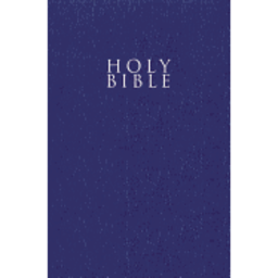 Gift & Award Bible-NIV-Blue