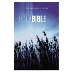 NIV Outreach Bible