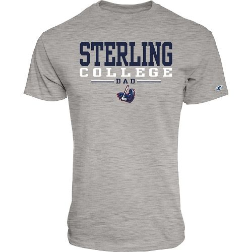 Blue 84 SC Dad T-Shirt - Heather Grey -