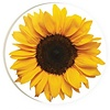 Car Coaster-Sunflower