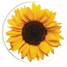 Car Coaster-Sunflower