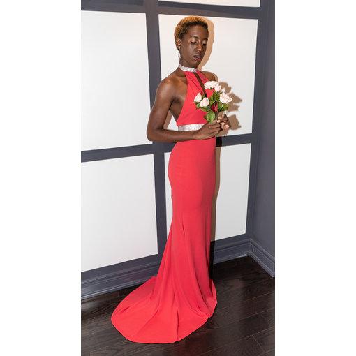 Vivid Dress Red