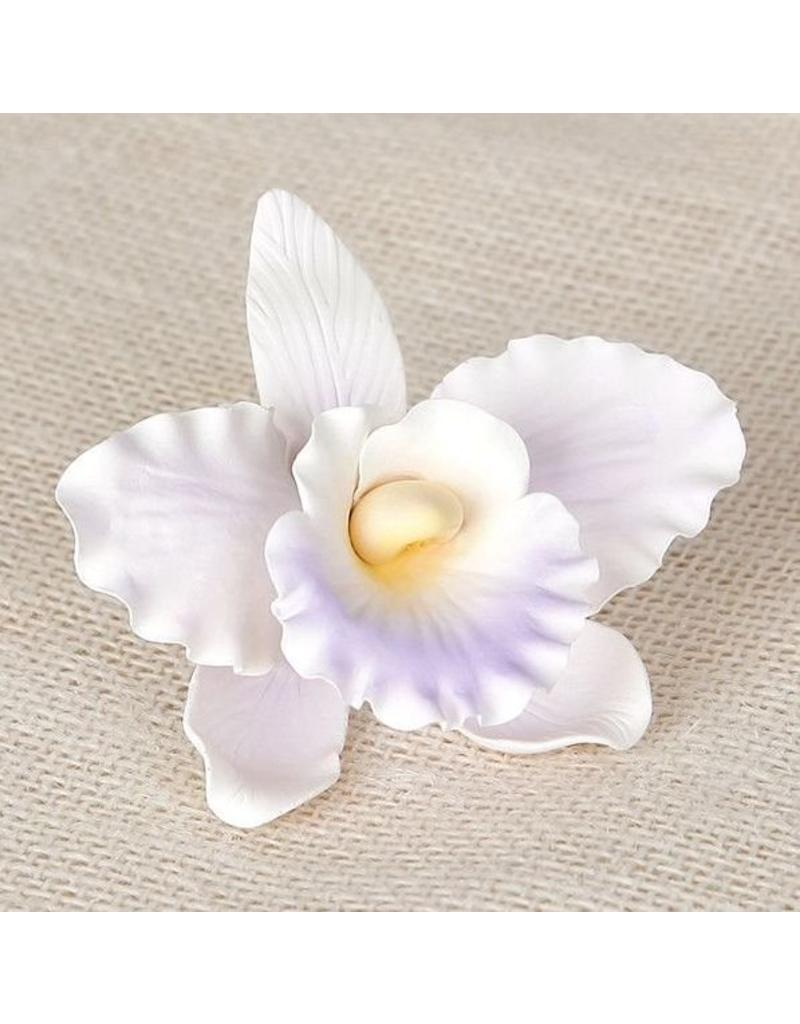 SUGAR FLOWER LARGE ORCHID WHITE-LAVENDER