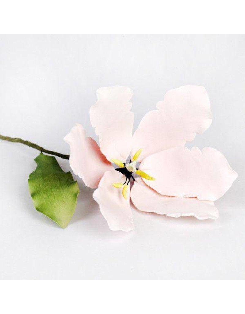 SUGAR FLOWERS TSL