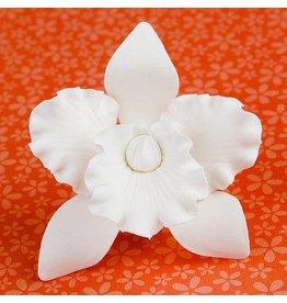 """CATTLEYA ORCHID WHITE 3"""" SUGAR FLOWER"""