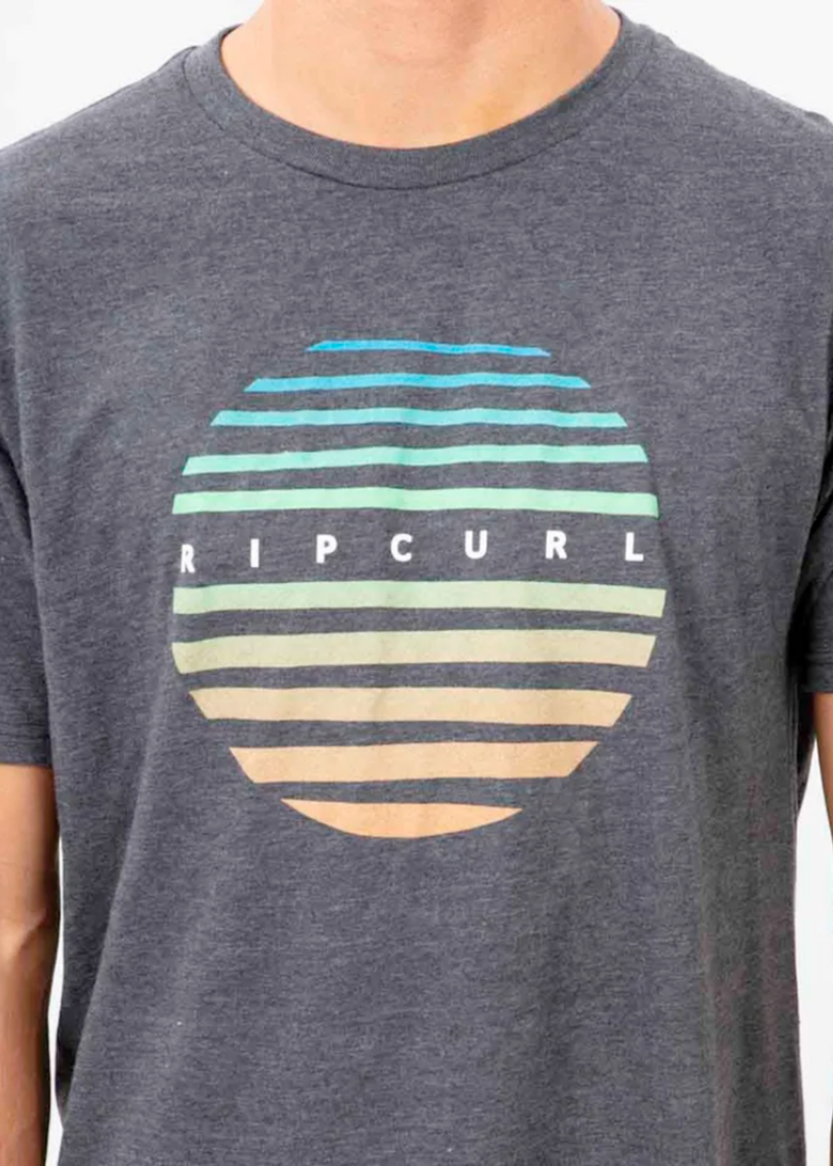 RIP CURL 21 RIP CURL PALM VALLEY SHORT SLEEVE TEE
