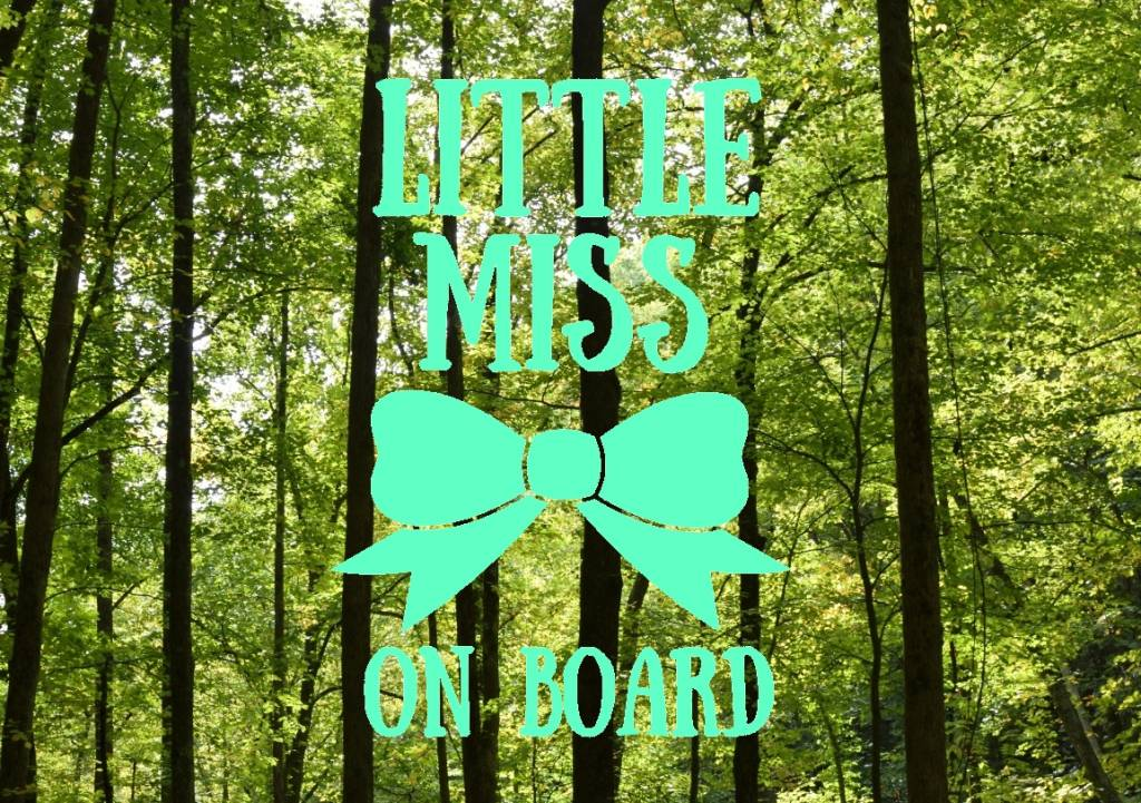 Nappy Shoppe Sticker - Little Miss on Board