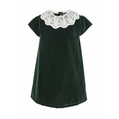 Carriage Boutiques Green Velvet Lace Collar Dress