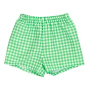 Bailey Boys Mint Gingham Swimtrunk