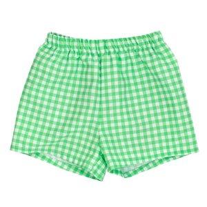 Bailey Boys Mint Gingham Swimtrunk
