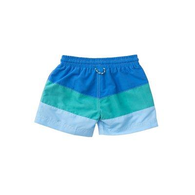 Prodoh Blue Perennial Colorblock Swim Trunk