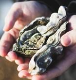 Toadfish, LLC Put Em Back Oyster knife, teal