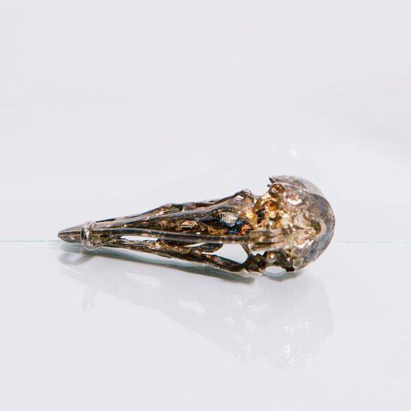 Alice Waese Silver Bird Skull Pin
