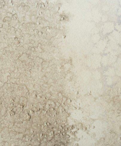 Calico Wallpaper Calico Wallpaper - Oceania