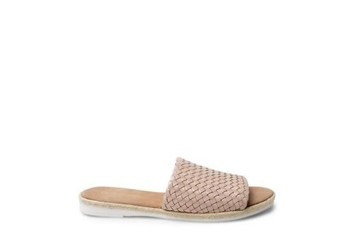 STEVE MADDEN *DERNIÈRE CHANCE* TAILLE 8 / SANDALES MIGHTY - BLUSH