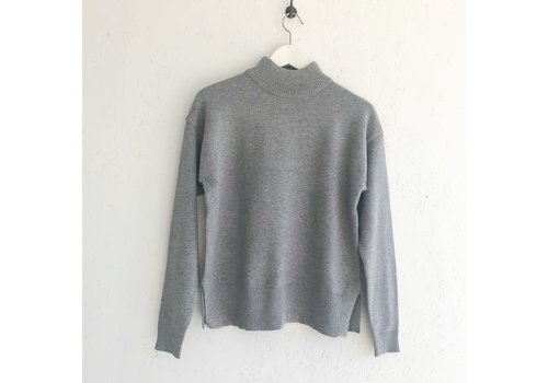 B.YOUNG CHANDAIL TURTLE - GRIS