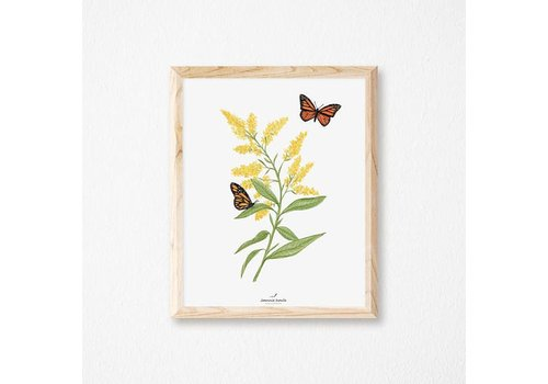 JOANNIE HOULE AFFICHE 8X10 VERGE D'OR