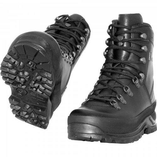 Lowa Mountain Boot GTX TF