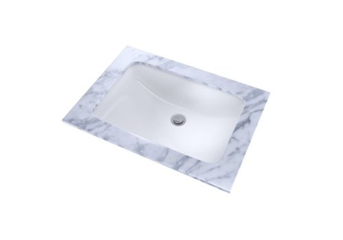 TOTO TOTO - LT542G Rectangular Sink