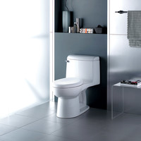 American Standard - Champion 4 - Regular Height - One Piece Toilet