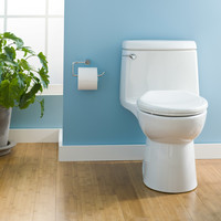 American Standard - Champion 4 - Regular Height - One Piece Toilet - 2004314.020