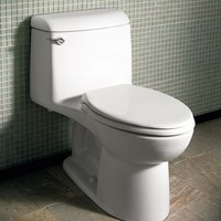 American Standard - Champion 4 - Right Height - One Piece Toilet - 2034314.020