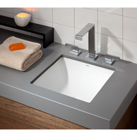 Cheviot - Square - Dual-mount sink