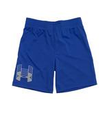 Under Armour Powder Blue Shorts