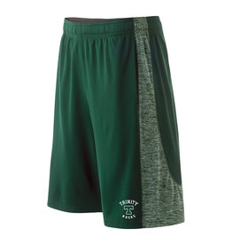 Hollaway Electron Shorts Green
