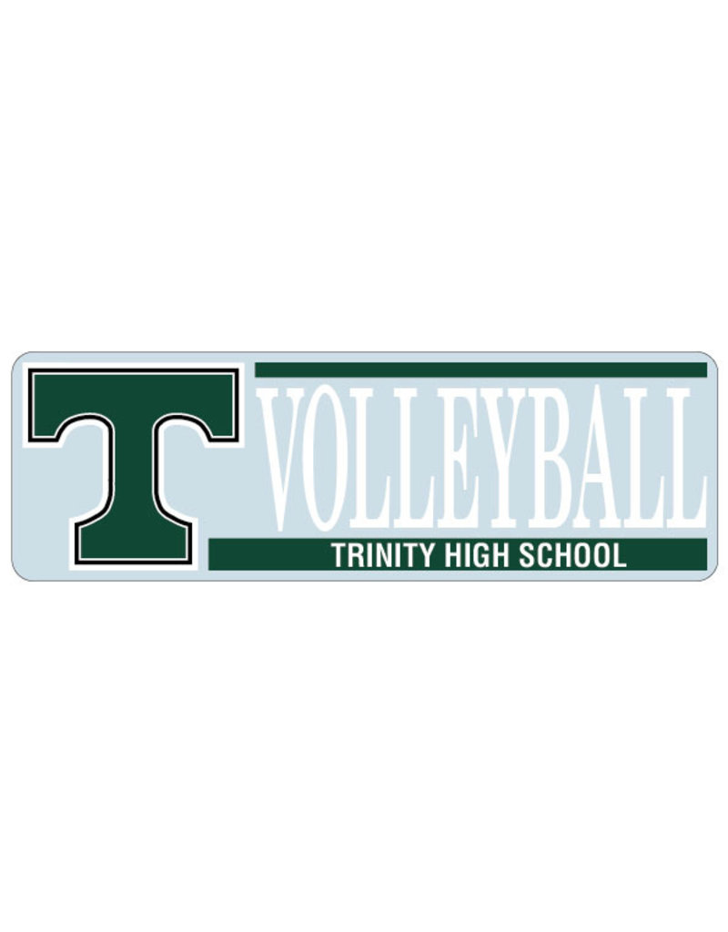 Angelus Pacific Decal Trinity Volleyball