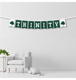 University Blankets and Flag Corp Banner String Trinity with Shamrocks
