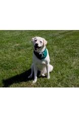All Star Dog Trinity Pet Bandana
