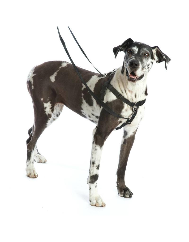 "2 HOUNDS DESIGN Freedom Harness Training Pack 1"" Large"