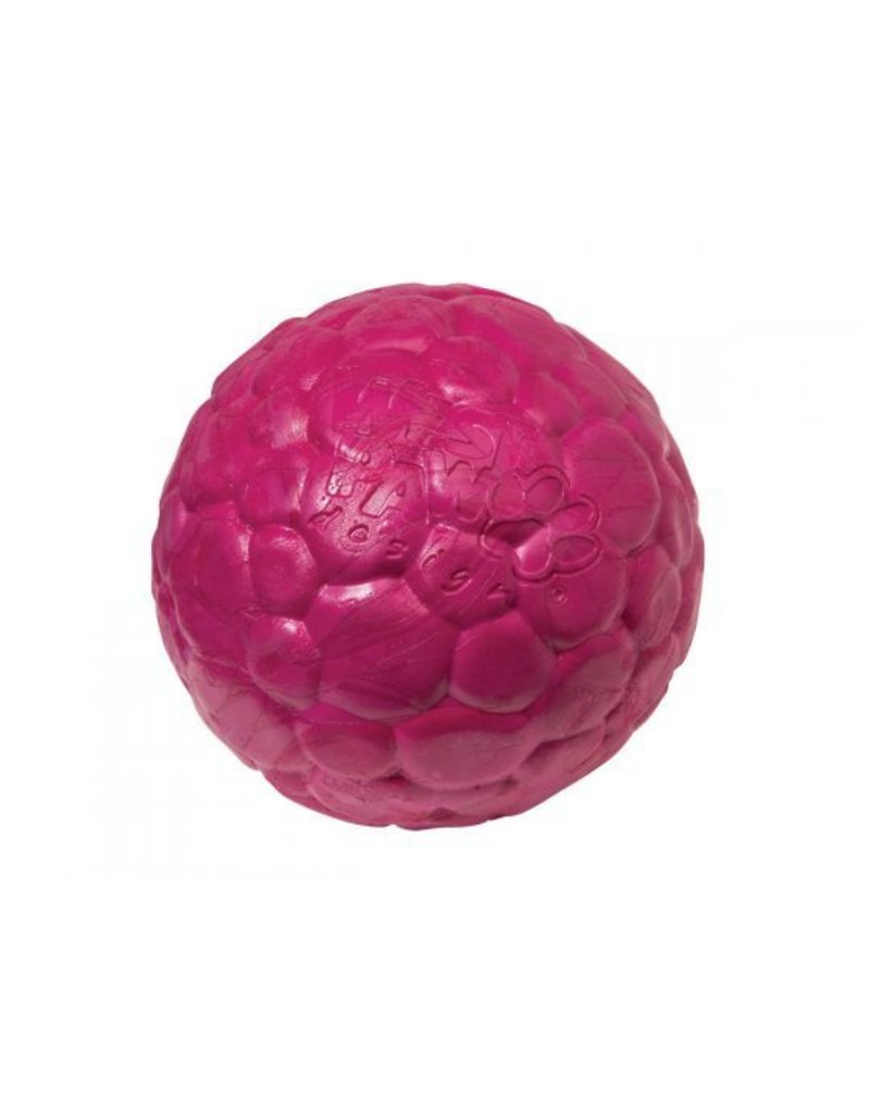 WEST PAW DESIGN West Paw Boz Dog Ball Large