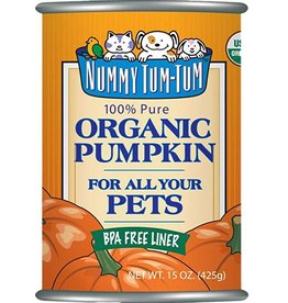 Nummy Tum Tum Pumpkin Can 15 OZ