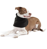 Gold Paw Series Gold Paw Series Snood