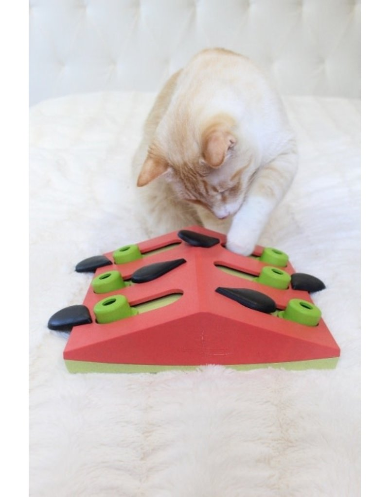 NIna Ottosson Nina Ottosson Melon Madness Puzzle & Play Cat Game