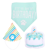 Pearhead Pee Birthday Pawty Kit