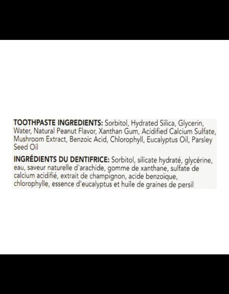 Petrodex Peanut  Butter Dental Kit Dog
