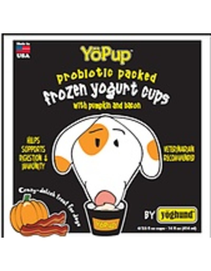 Yoghund All Natural Pumpkin & Bacon Frozen Yogurt