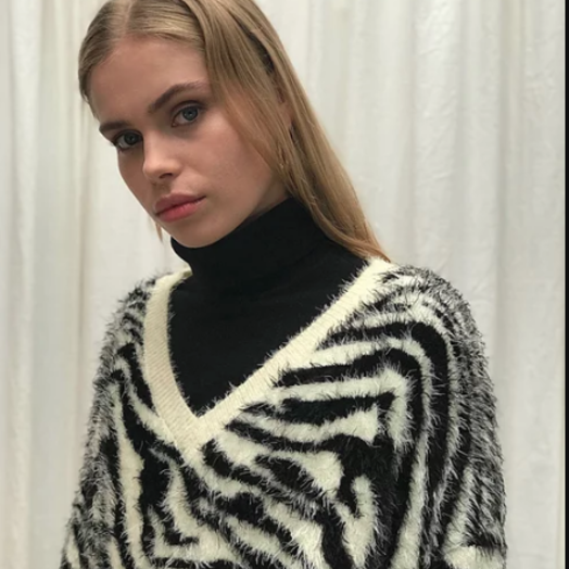 House of Sunny Zebra Deep V-Neck Knit