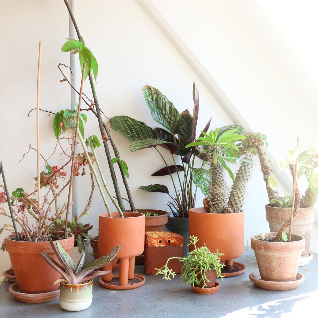 Studio Arhoj Tri Pot Small