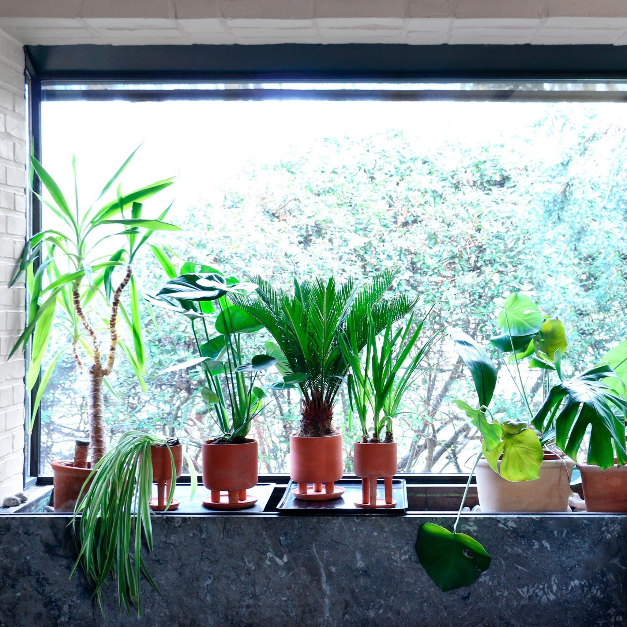 Studio Arhoj Tri-Pot, Big